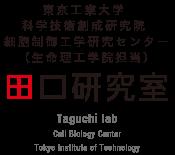 東京工業大学 科学技術創成研究院 細胞制御工業研究センター(生命理工学院担当)田口研究室