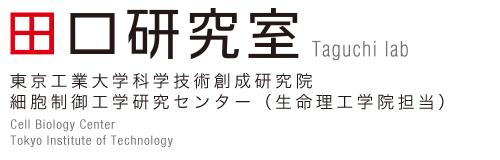 東工大・田口研 細胞制御工業研究センター(生命理工学院担当)田口研究室